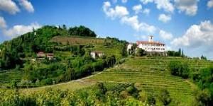 Il Viaggio della Carta Geografica di Livio Felluga @ MANZANO (UD) | Friuli-Venezia Giulia | Italia