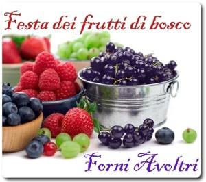 Festa dei Frutti di Bosco a Forni Avoltri @ Forni Avoltri (Ud) | Forni Avoltri | Friuli-Venezia Giulia | Italia