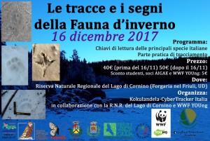 Le tracce e i segni della Fauna d'inverno @ Località Cornino, Forgaria nel Friuli (UD) | Cornino, Forgaria nel Friuli | Friuli-Venezia Giulia | Italia