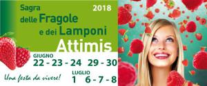 Sagra delle Fragole e dei Lamponi - 49° Edizione @ Attimis (UD)   Attimis   Friuli-Venezia Giulia   Italia