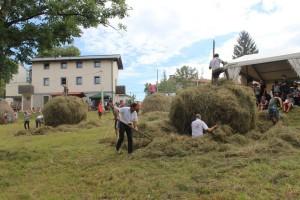 Festa della Meda e del Miele @ Porzus di Attimis (UD)   Porzus   Friuli-Venezia Giulia   Italia