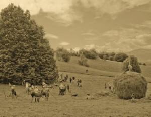 Il Ritorno dei Falciatori: Rievocazione dello Sfalcio a Mano @  Tribil Inferiore (UD) | Tribil Inferiore | Friuli-Venezia Giulia | Italia