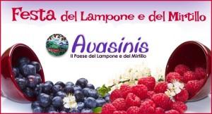 20^ed. Festa del Lampone e del Mirtillo @ Avasinis (UD) | Avasinis | Friuli-Venezia Giulia | Italia