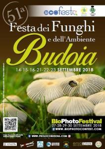 51^ed. Festa dei Funghi e dell'Ambiente @ Budoia (PN) | Budoia | Friuli-Venezia Giulia | Italia