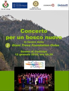 Concerto per un Bosco Nuovo @ Codroipo (UD)