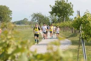 1^ Trofeo Jadér Naonis_11^ Running tra le Vigne @ Casarsa della Delizia | Castions | Friuli-Venezia Giulia | Italia