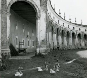 Villa Manin. Il re, il Kaiser e le Oche. @ Passariano (UD) | Passariano | Friuli-Venezia Giulia | Italia