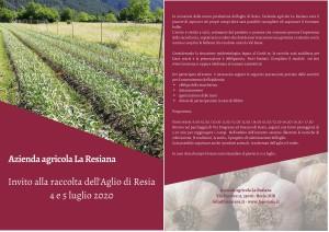 Raccolta dell'Aglio di Resia @ Oseacco (UD) | Oseacco | Friuli-Venezia Giulia | Italia
