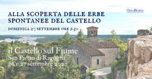 Camminata alla scoperta delle erbe spontanee @ Castello di Ragogna | Friuli-Venezia Giulia | Italia