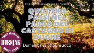 Passeggiata naturalistica nel Parco del Castagno di Dughe @ Tribil Superiore | Stregna | Friuli-Venezia Giulia | Italia