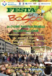 Festa del Bosco 2020-mercatino annullato @ Piazza della repubblica - Monfalcone
