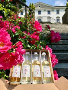 88^ Fiera Regionale dei Vini di Butrio - Regina di Cuori e Re di Coppe @ Buttrio (Ud) | Buttrio | Friuli-Venezia Giulia | Italia