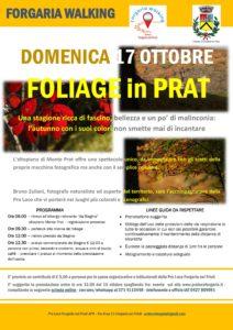 Foliage in Prat @ Forgaria nel Friuli (Ud) | Forgaria Nel Friuli | Friuli-Venezia Giulia | Italia